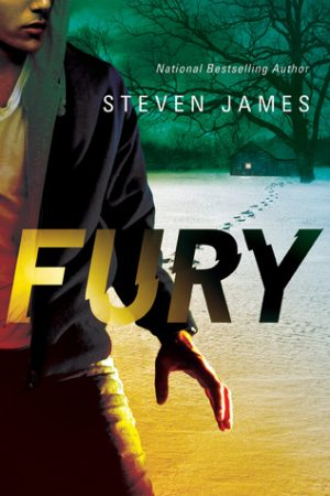 Review: Fury by Steven James (Blur Trilogy #2)